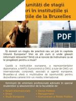 Seminarii Jobs Bruxelles Flyer