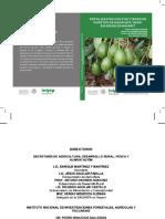 Fertilización Con Zinc y Boro en Huertos