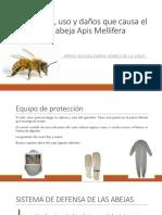 composicion y daños de apis mellifera.pptx
