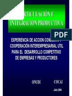 Dia 1-3 Conceptos Artculación e Integración.pdf