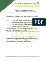II Informe Determinacion de Cenizas 2014