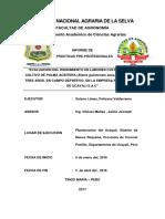 EVALUACIÓN DEL RENDIMIENTO DEL PERSONAL EN LABORES CULTURALES DEL CULTIVO DE PALMA ACEITERA
