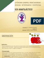 12.-Shock Anafiláctico Exposicion