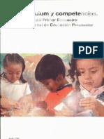 8-Curriculum y Competencias