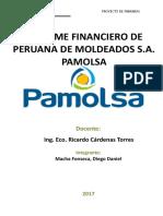 Informe Financiero - Pamolsa - Diego Macha