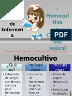 Hemo Cult Ivo Ooo