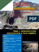 Tema 1 Introducción.pdf