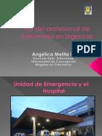 Rol Del Profesional de Enfermería en Urgencia Clase 1.2 (1)