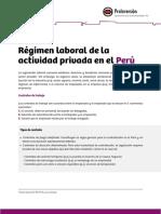 4 Regimen Laboral.pdf
