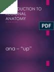 introduction to regional anatomy