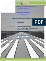 Fallas Pavimentos - Informe Final