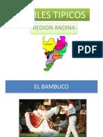 Bailes Tipicos Region Andina
