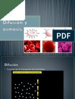 Difusión y Osmosis