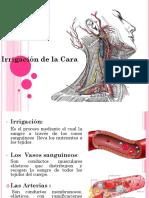 presentacionirrigaciondelacara-090226075839-phpapp02