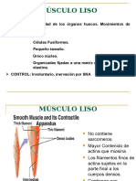 Lección 8 Fisiología Del Músculo Liso