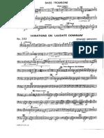 t3 Variations on Laudate Dominum
