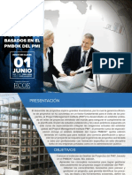 Gerencia Proyectos Pmbok Pmi