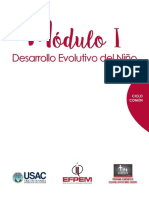 Moìdulo I Curso Desarrollo Evolutivo Del Nino