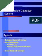45_1XMLEnabledDatabaseSystem
