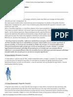 A Anatomia Da Aura _ Numerologia Pitagórica e Corpo Metafísico