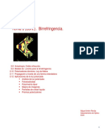 berrifrigencia.pdf