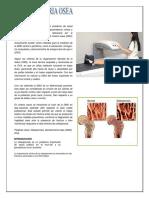 Densitometria Osea
