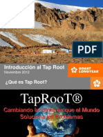 Entrenamiento Basico Tap Root 1