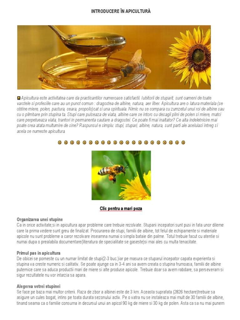 medicina din voalurile varicoase din flori de castan