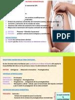 Diapositivas de Factores Que Desencadenan Un Tp