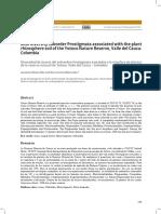 Diversidad de ácaros del sub-orden Prostigmata asociados a la rizosfera de plantas de la reserva natural de Yotoco, Valle del Cauca – Colombia