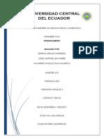 PUNZONAMIENTO-final.docx