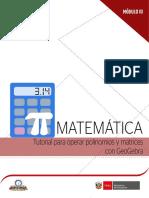 Tutorial Operar Polinomios y Matices Geogebra