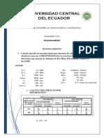 PUNZONAMIENTO accesss.docx