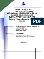 Informe de Diagnostico Calidad de Agua Sobre Cuenca Parcoy y Laguna de Pias