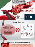 Origen y Desarrollo de Las Células Sanguíneas