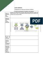 Anexo No. 3 - Distribución Comercial