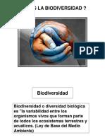 sensillo biodiversidad