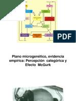 Psicolinguistica 14