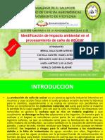 Presentacion de Impacto Ambiental Del Sector Cañero