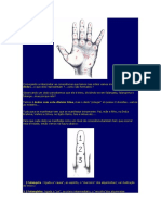 Quiologia Nilton Schutz