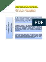 mapas conceptuales Constitucion 2008 Ecuador