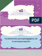 Intro Fundamentos Psicopedagógicos de La Sensopercepción
