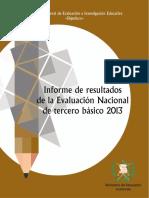 Informe_IIIB2013