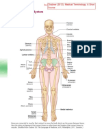 Muscoloskeletal_System - Medical Terminology