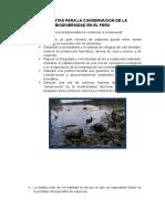 Propuestas Para La Conservacion de La Biodiversidad en El Peru