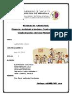 Mecanismo-de-la-hemostasia.docx
