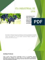 Planta Industrial de VID