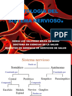 Clase 2 Histologia SNC (1)