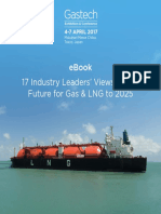 Leaders on the Future of LNG and Gas