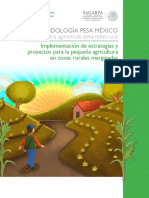 FAO - Metodología PESA Manual agentes desarrollo rural.pdf